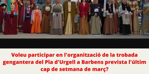 ORGANITZACIÓ TROBADA GEGANTERA