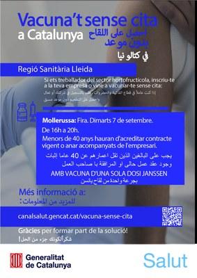 Cartell en àrab