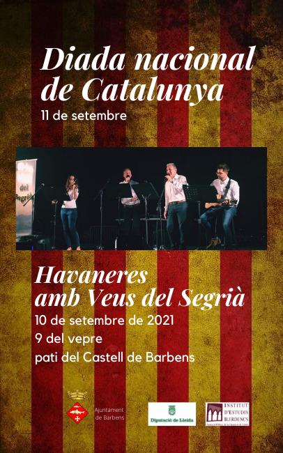 Diada nacional de Catalunya-xarxes.png